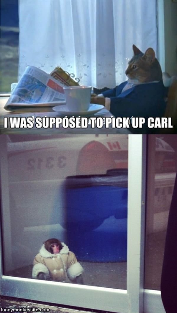 Supposed To Pick Up Carl